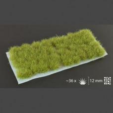 12mm Dry Green XL